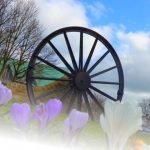 Photogrph of pit wheel through crocuses
