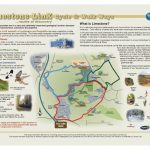 Photograph of Limestone Linx leaflet with map