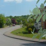 Photo of Beechfield Rise uphill