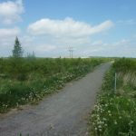 Photo of footpath over fields