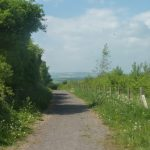 photo of footpath along limestone linx