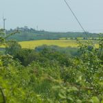 photo of wiew over fields somewhere in the ward