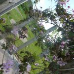 photo of sensory garden