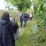 Photograph of more peolple on theri walk
