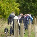 Photograph of people walking near a n fenceline