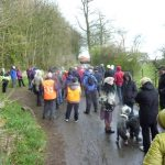 Photograph of people walking around the limestone Linx route