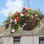 photo of a lovely hanging basket in Church street during 2010