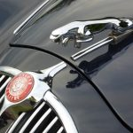 Photograph of Jaguar grille and badge