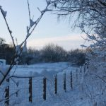 Photograph of snowy fenceline