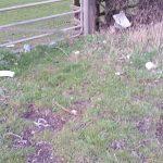 Photograph of rubbish