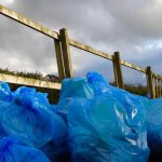 Photograph of bags of collected rubbish