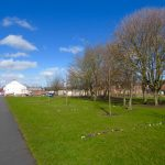 Photograph of village green s in spring with crocus