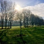 Photograph of village green in spring with sun through trss