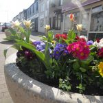 Photograph of planter in front st with mix of lovely flowersreet