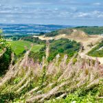 Councillors needed for Quarrington Hill