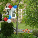 red white and blue balloons and tulips