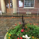Flowers on a wet day outside Coxhoe Village Hall